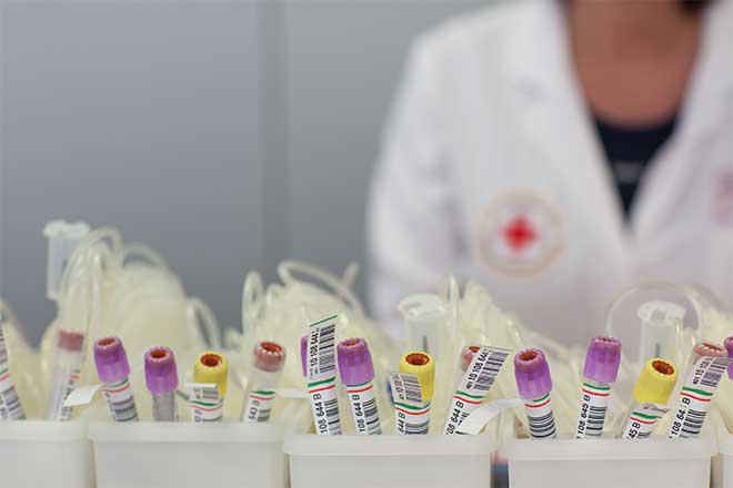 DRK Blutspendedienst